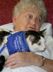 Is There A Test For Alzheimers >> CAT-ASSISTED THERAPY, PET PARTNERS STYLE | Mollie Hunt ...