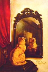 cat in mirror