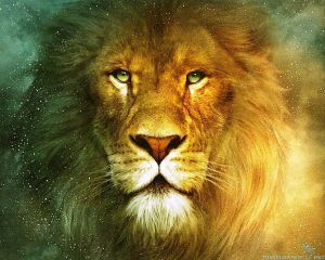 beautiful-lion-wallpapers-1280x1024