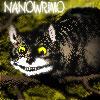 nanowrimo-cheshire-cat