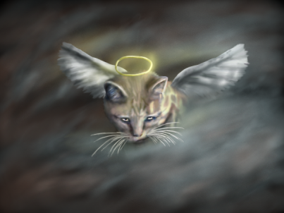 angel_cat_of_the_night_by_thefaileddream-d3hlh4s