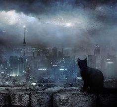faraway-night