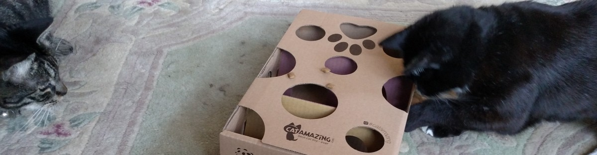 Still time to win CAT AMAZING EARTH-FRIENDLY CAT PUZZLE TOY